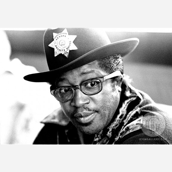 Bo Diddley by Gijsbert Hanekroot