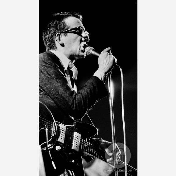 Elvis Costello by Adrian Boot