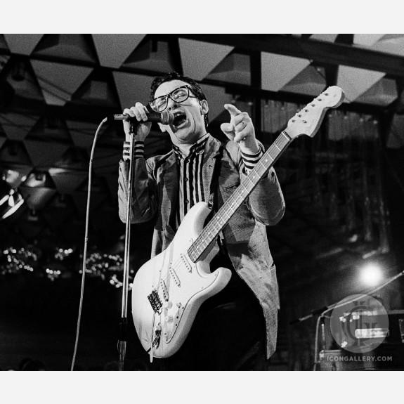 Elvis Costello by Andy Freeberg
