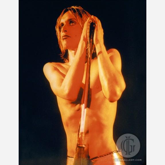 Iggy Pop by Mick Rock