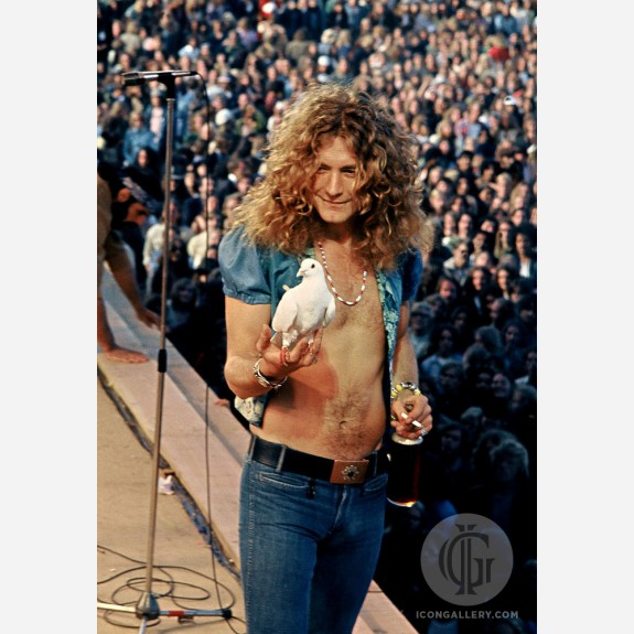 Robert Plant of Led Zeppelin by James Fortune