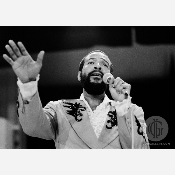 Marvin Gaye by Andy Freeberg