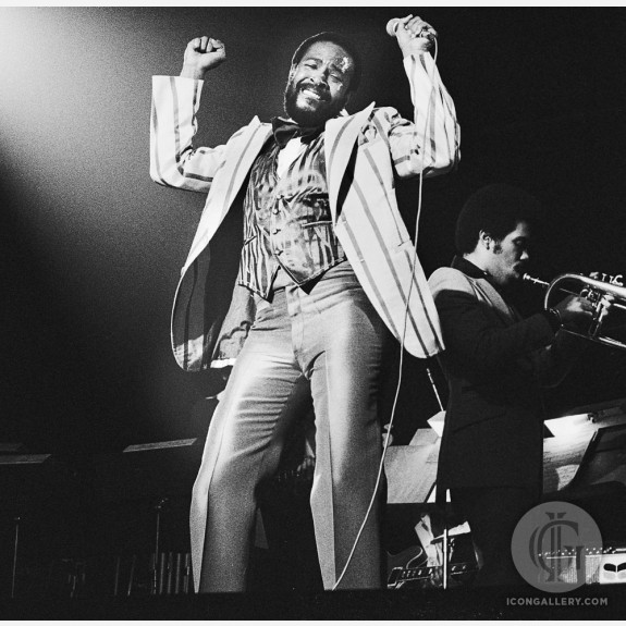 Marvin Gaye by Gijsbert Hanekroot