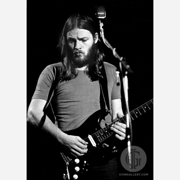 David Gilmour of Pink Floyd by Barrie Wentzell