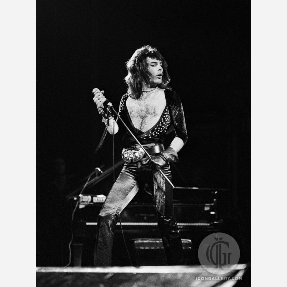 Freddie Mercury of Queen by Gijsbert Hanekroot