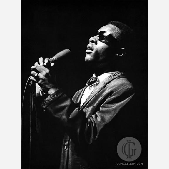 Stevie Wonder by Christian Rose
