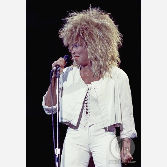 Tina Turner by Al Rendon