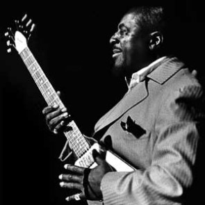 Albert King by Barrie Wentzell
