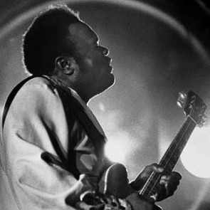 Freddie King by Barrie Wentzell