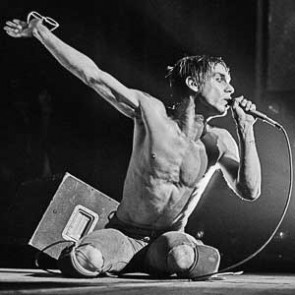 Iggy Pop by Steve Emberton