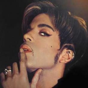 Prince by Steve Parke