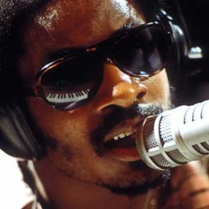 Stevie Wonder by Jim Britt