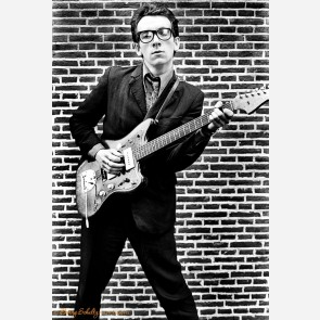 Elvis Costello by Barry Schultz