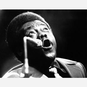 Fats Domino by Gijsbert Hanekroot