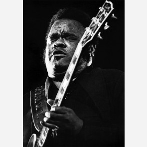 Freddie King by Christian Rose