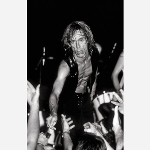 Iggy Pop by Ken Settle
