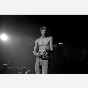 Iggy Pop by Mitchell Kearney