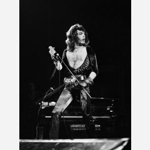 Freddie Mercury of Queen by Gijsbert Hanekroot