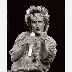 Rod Stewart by Al Rendon