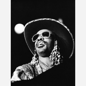 Stevie Wonder by Christian Rose