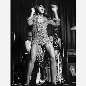 Tina Turner by Barrie Wentzell